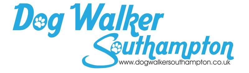 dog walking southampton